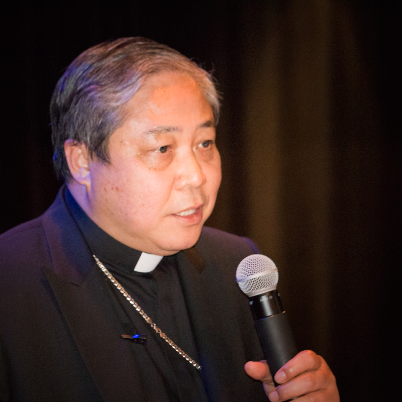 Archbishop auza imagines the Pontiff will urge the public to care for the environment in light of his Encyclical Laudate Si</em>